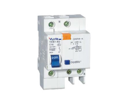YEB1L-63-60/2 Earth Leakage Circuit Breaker C45L ELCB
